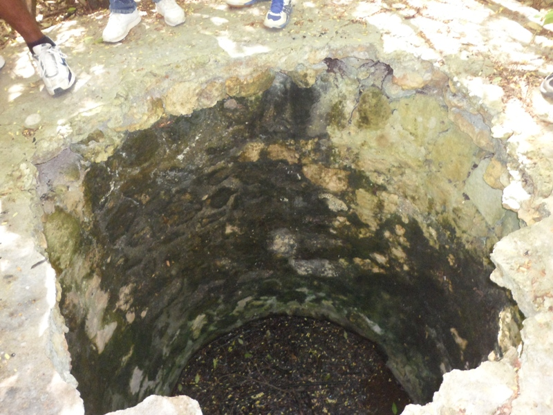 The inside of the well, Katouche Rain Forest, Anguilla